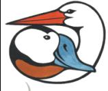 centro-cicogne-logo.gif